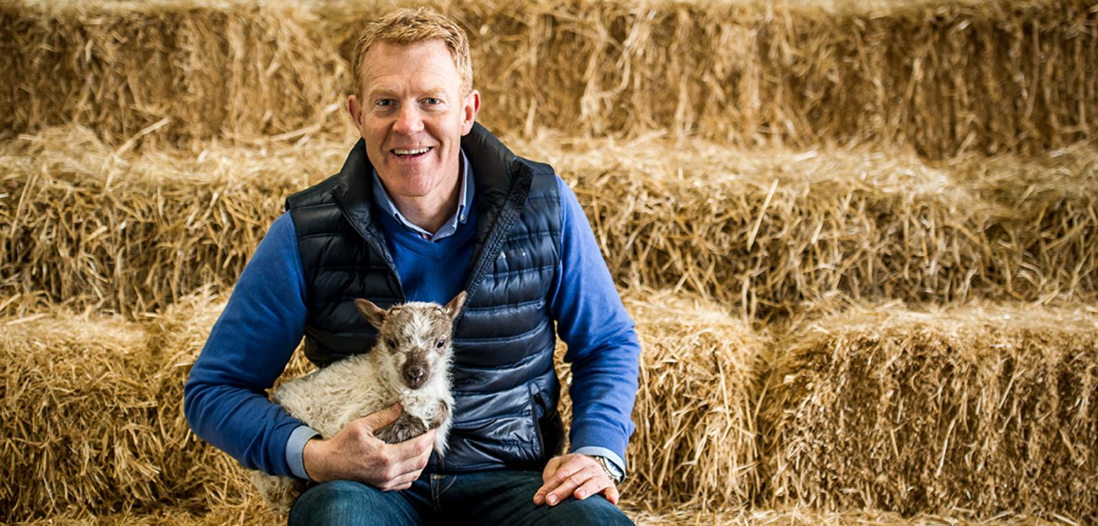 British Farmer Adam Henson, dressed in blue and black, posing with a lamb in front of a backdrop of Hay. Promotional image for the New Adam Henson Bed Collection in partnership with Harrison Spinks